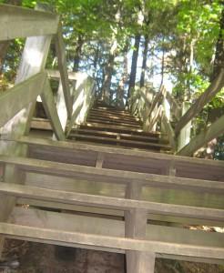 endless-steps